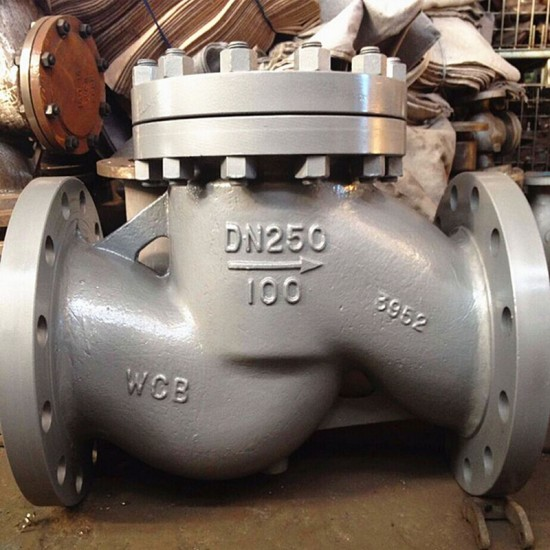 Dual plate water butterfly check valve