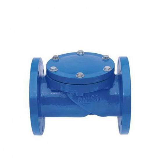 Industrial cast steel check valve