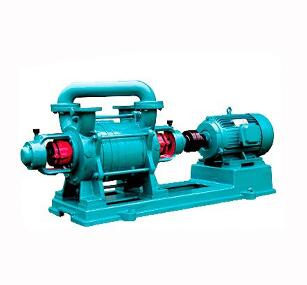 Electricity Single Stage Water Ring Vacuum Pump